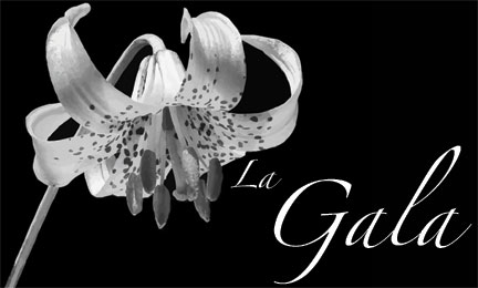 LaGala-banner